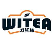 万红扬logo