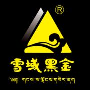 雪域黑金logo