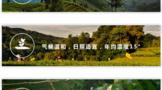 蒙顶山茶产区环境介绍
