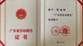 鸿雁人在清远采茶大赛&加工国赛省预选赛获奖!