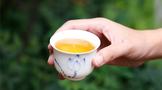 云源号:史上最全普洱茶知识,值得收藏!