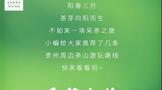 阳春三月,贵州周边茶山游玩线路