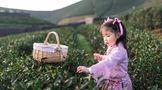 川茶集团:来一场户外探索,拥抱大自然!