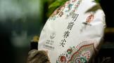 勐傣2021年明前春尖:独有花蜜香、滋味浓烈厚实
