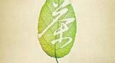 纪录片《茶,一片树叶的故事》六集全