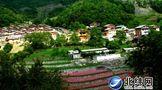 一幅幅美丽乡村画卷在雅安展开