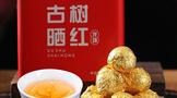 蒲门茶业2021年高山古树晒红龙珠,滋味醇厚,韵味足