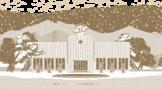 六妙第二代庄园窖藏白茶,核心产区之非遗技艺,再现庄园魅力