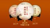 中茶蝴蝶:经典回味 经典传承
