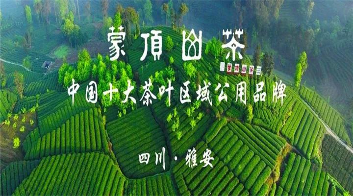 蒙顶山茶全国行业标准进入征求意见阶段