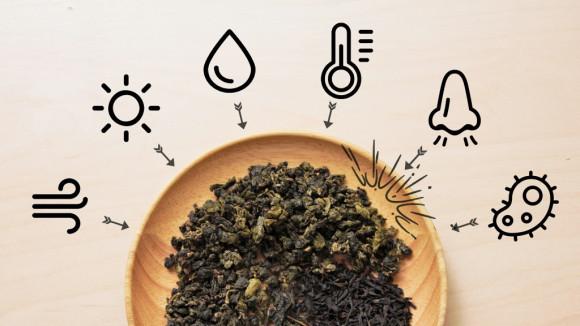 茶叶闻起来发酸有霉味,你有什么头绪?茶叶防潮防霉正确储藏之道请看这里