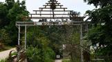 深度寻访茶树王之乡丨南糯山十二寨之半坡新寨