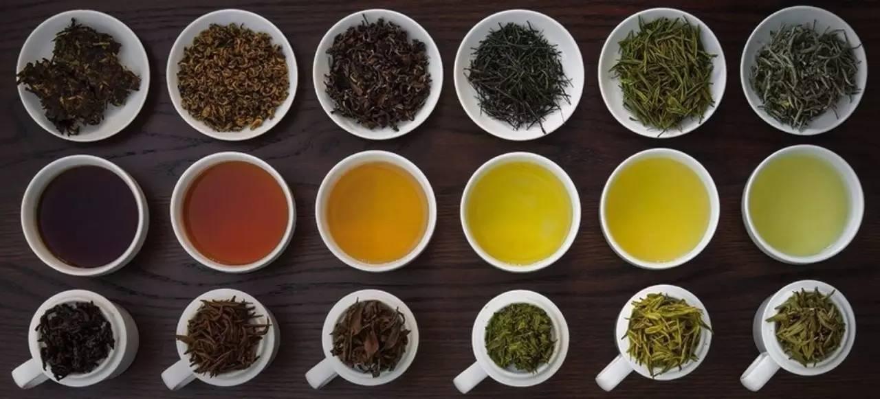 引发结石.导致骨质疏松和贫血……喝茶居然有这么多危害?