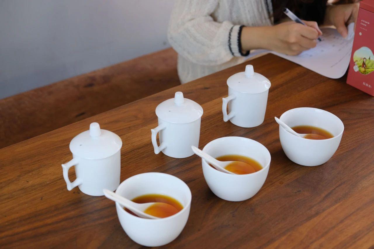 星球测评   如何挑选一款心仪的红茶?