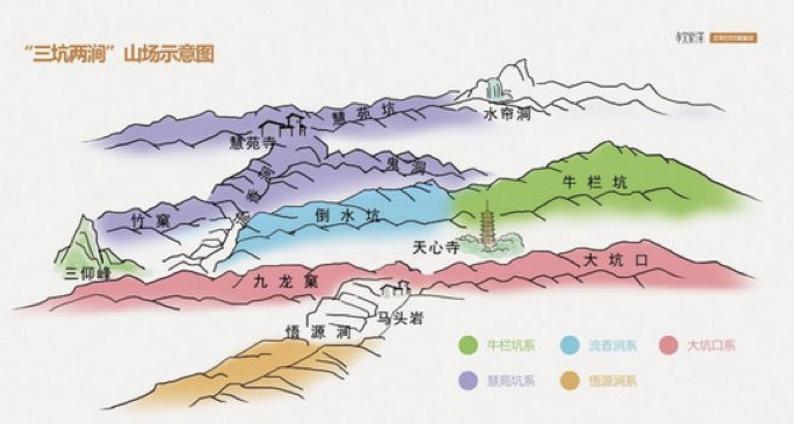"""星球测评   岩茶小白""""避坑锦囊"""":如何快速挑选水仙、肉桂、大红袍?"""