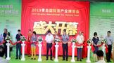 青岛茶博会篇:2021第4届山东青岛北方茶博会6月4日盛大开幕!4万平,规模空前!