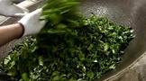 谈谈做茶季怎样收到满意的古树茶?