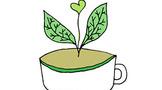 芽头越多越好?各大茶类分开看~茶叶各部位的风味成因科普