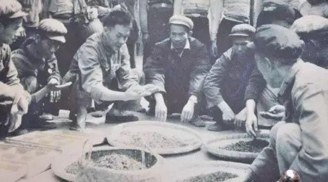 普洱茶产销格局变迁史(云南从边缘到中心)