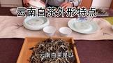 云南白茶的外形特征
