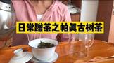帕真古树茶的特点,帕真普洱茶好喝吗?