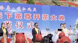 陈勋儒等各位专家出席1068万十公斤茶叶的茶王开采仪式