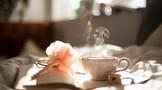 喝茶只是给水增添一点味道 品茶则是六根的感受
