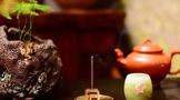 茶圈炫技宝典:如何让自己在茶圈显得有本事