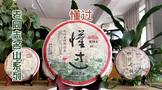 2021年老同志名山系列:懂过500克生茶