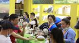 茶企茶商如何增抗风险的能力?就该这么干!