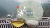 2021寻茶记深度视频丨专家茶人探山识茶——冰岛④