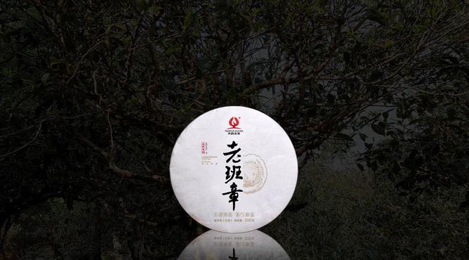 Lao ban zhang yu shou