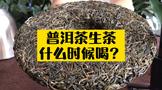 普洱茶生茶存放多少年最好喝?