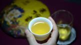 【云约茶短视频】茶碎末-品饮兴海老班章