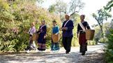 """布朗族歌谣:藏着布朗族与茶在景迈山""""相遇""""的故事"""