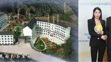 """百年圆梦:12位福鼎茶人亲身讲述——""""我与福鼎白茶的故事""""丨奇古枝:为世界制作健康好白茶"""