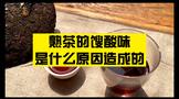 普洱熟茶喝起来有馊酸味,到底是怎么回事?