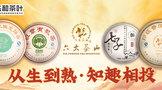 【東和合作品牌介紹】六大茶山:從生到熟,知趣相投