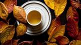 普洱茶的正确选购指南.基本贮存原则