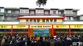 四川宜宾8家茶企发表宣言:推动中国茶业走向世界