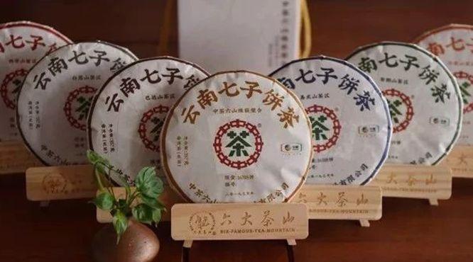 【品鉴会】尴尬了,举办了一百多期品鉴会还是猜不对普洱茶山头