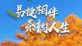 戎氏好茶参展第二届呼和浩特茶产业博览会
