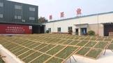 雾雨深建立现代化标准白茶物流仓储基地