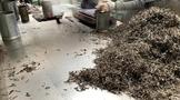 普洱茶常识之三十二:从毛茶到压饼过程中产生损耗的原因