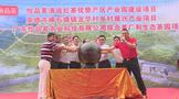 英德怡品茗综合型茶叶产业园区项目开工●!