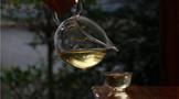 冰岛普洱茶的特点与产地