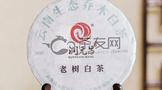 汤香纯正,口感甜润:2020年润元昌老树白茶300克