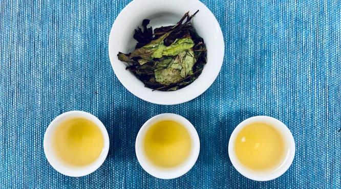 如何区分有机白茶的品种和等级?