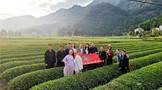 烟台市茶叶学会参展第十四届海峡两岸国际茶叶博览会