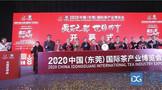 2020东莞茶博会开幕 打造东莞藏茶产业盛宴